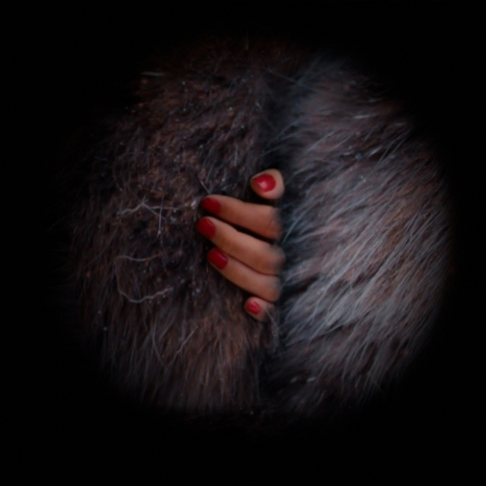 Fingers and Fur, film still from Helen Judges Film on Vimeo